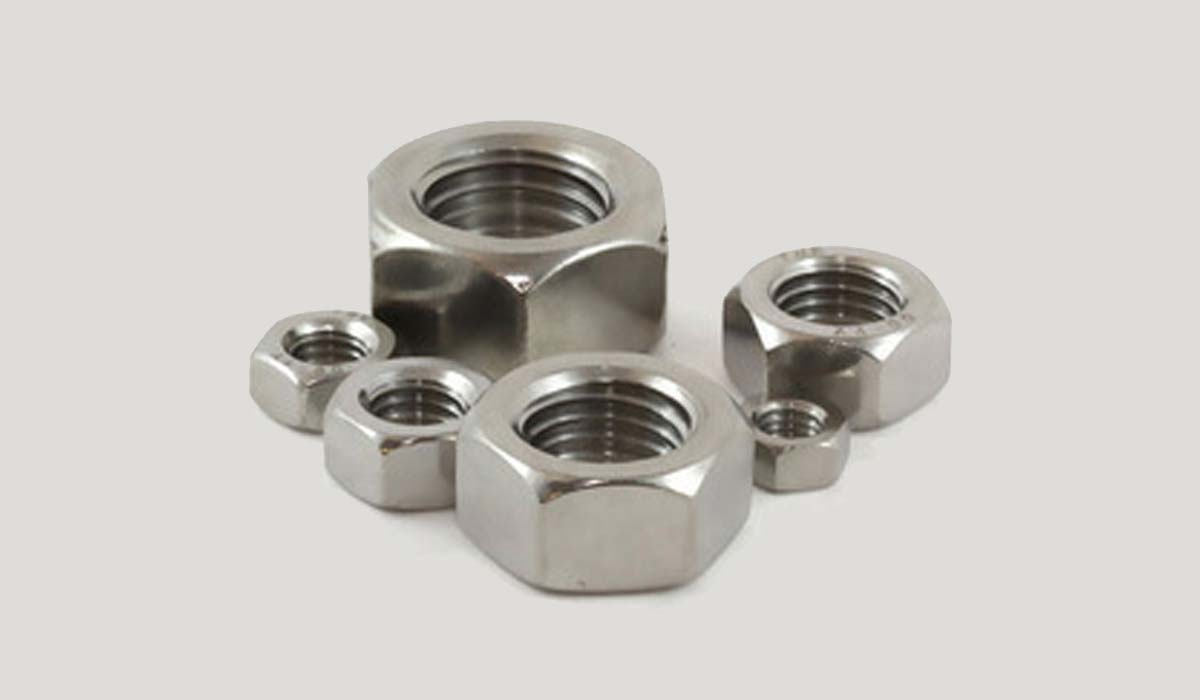 Duplex Steel Nuts